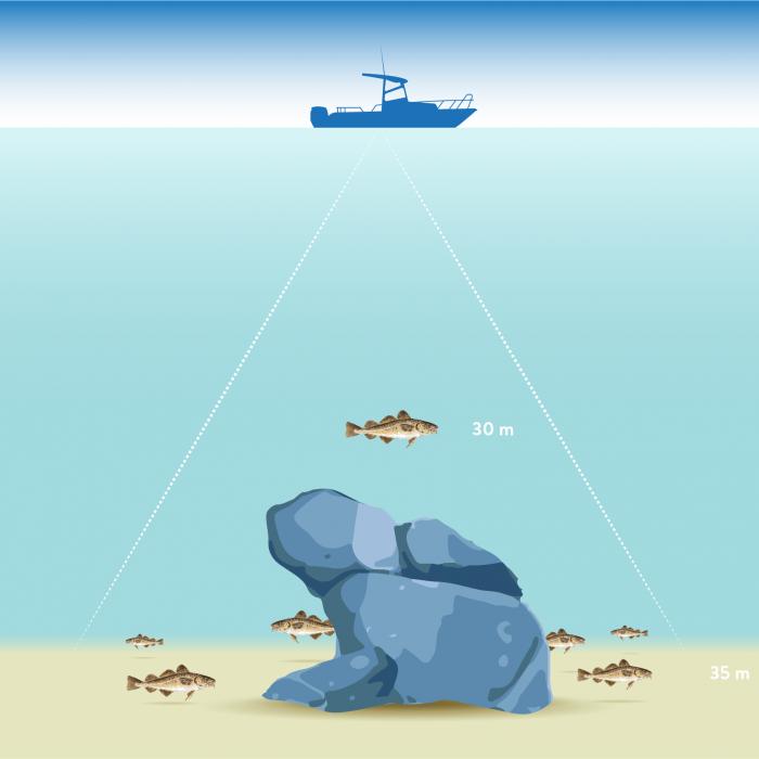 Havsfiskeboken
